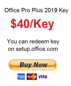 MS Office Pro Plus 2019 product key
